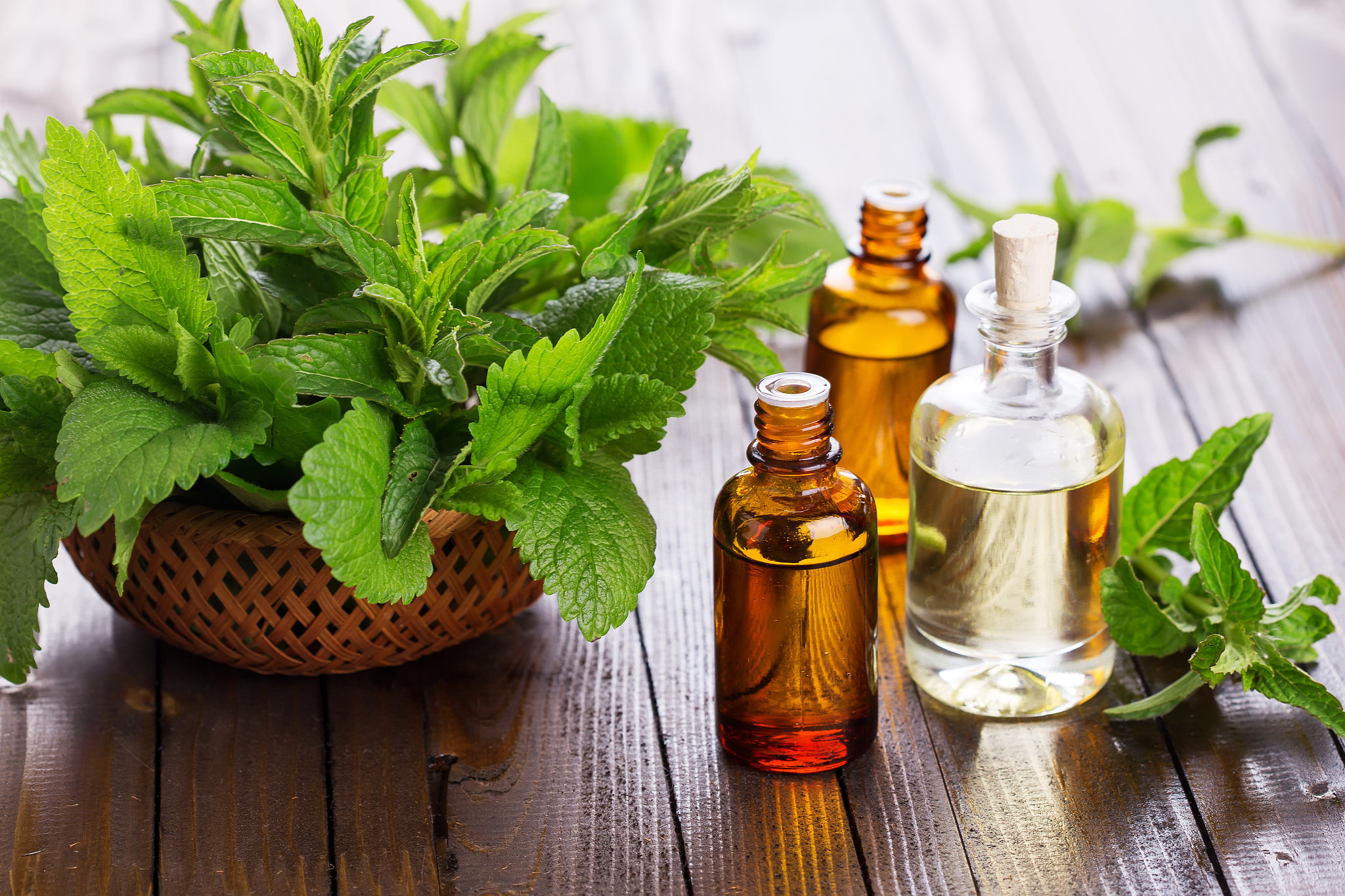 Peppermint or Eucalyptus Oil – cool your home in the summer