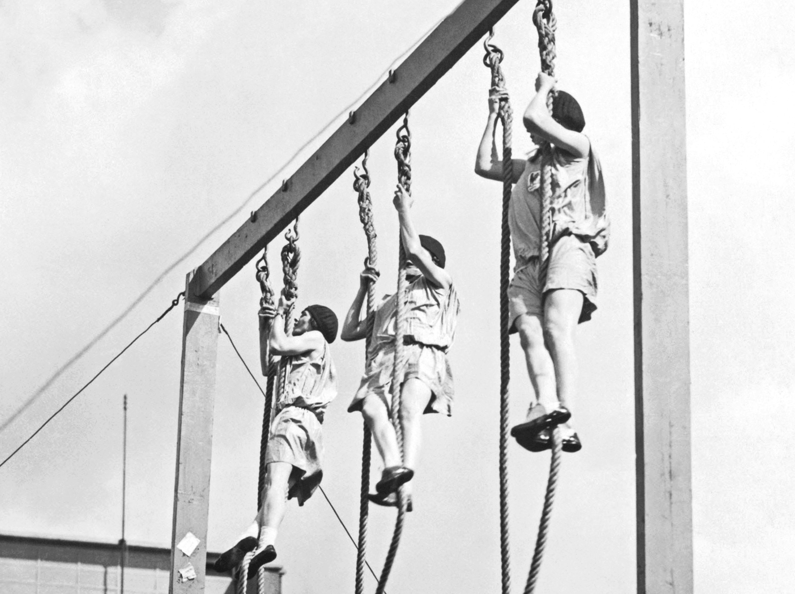 Olympic Rope Climbing Event