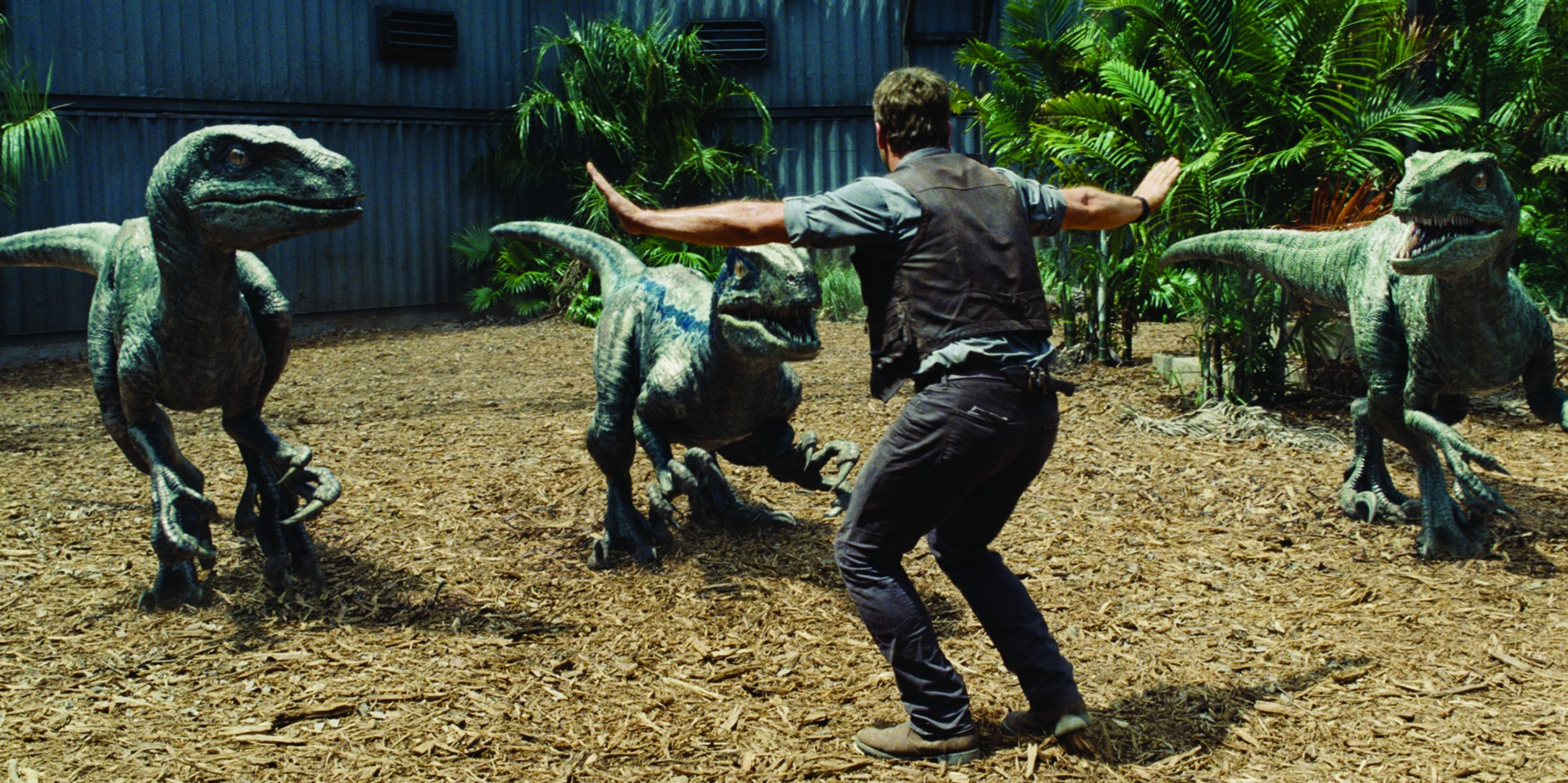 The Jurassic Park Series – book to screen adaptation