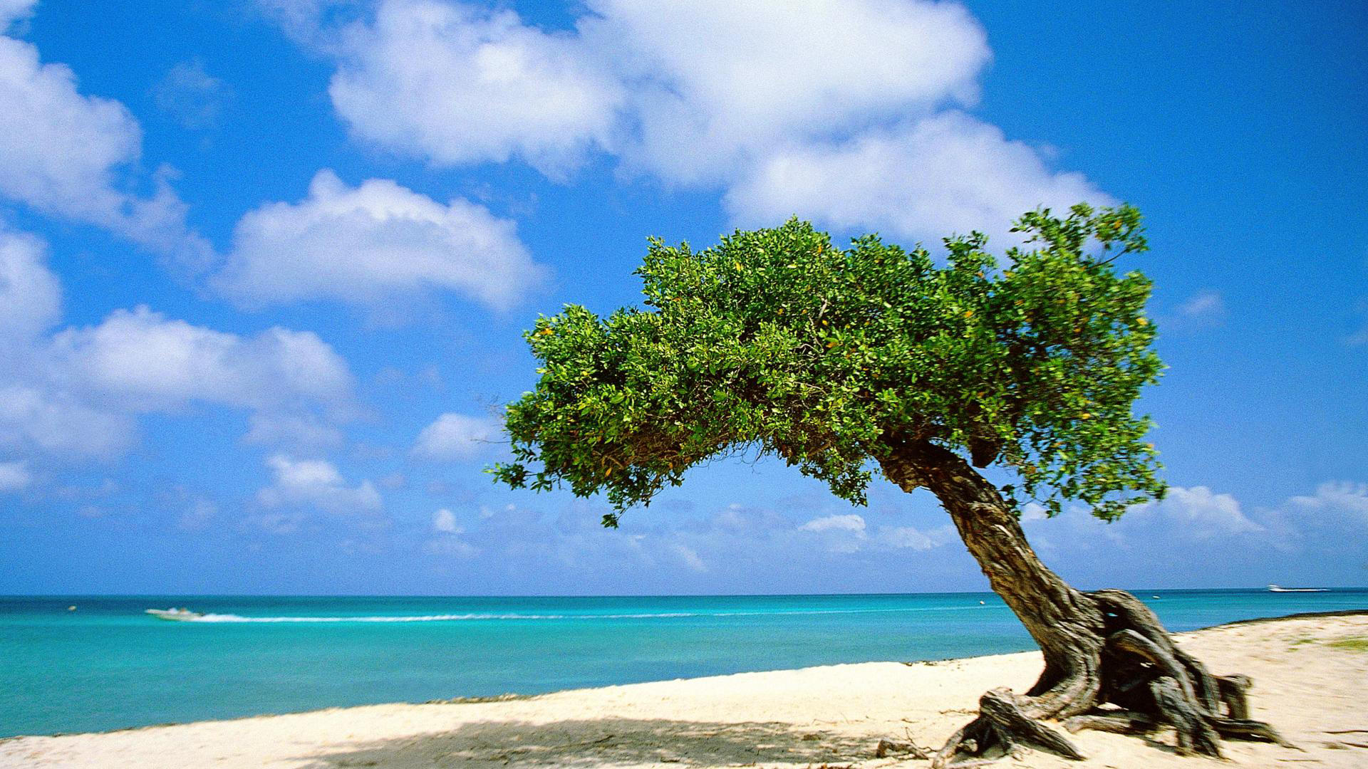 aruba-bonaire-and-curacao-off-season-travel