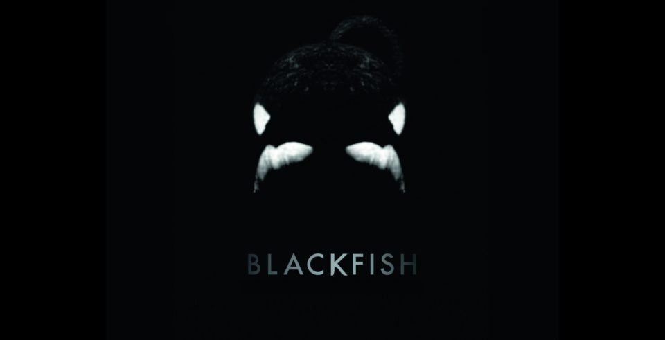 via blackfishmovie.com