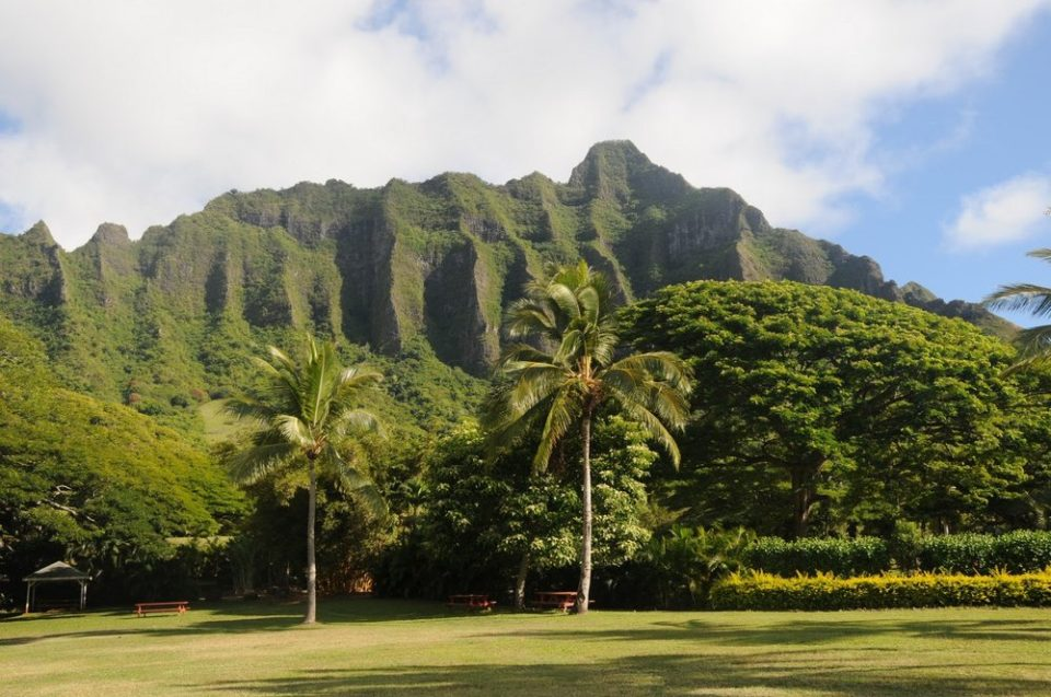 via hawaiidiscountblog.com