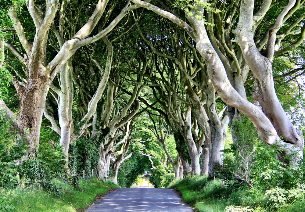 Northern Ireland Game of Thrones – TV and film travel destination