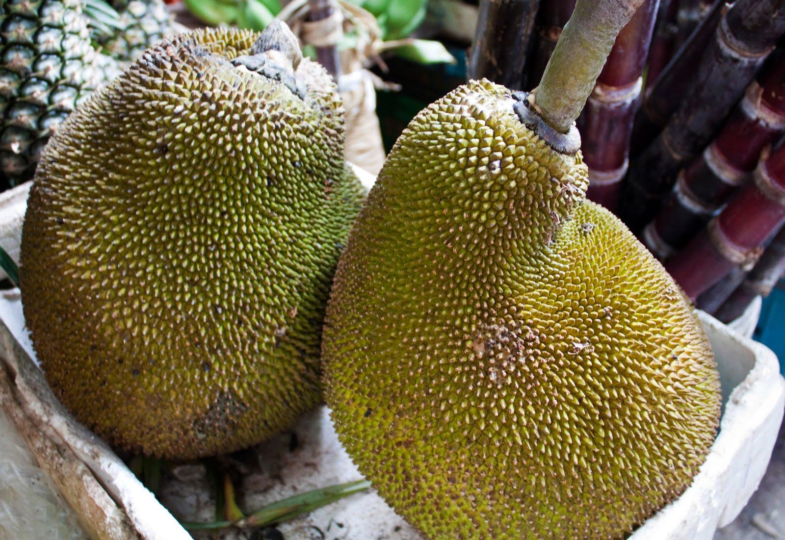 Asian Jackfruit