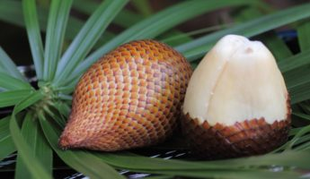 Asian Snake Fruit 345x200 24 Exotic Asian Fruits Packed With Nutritional Goodness