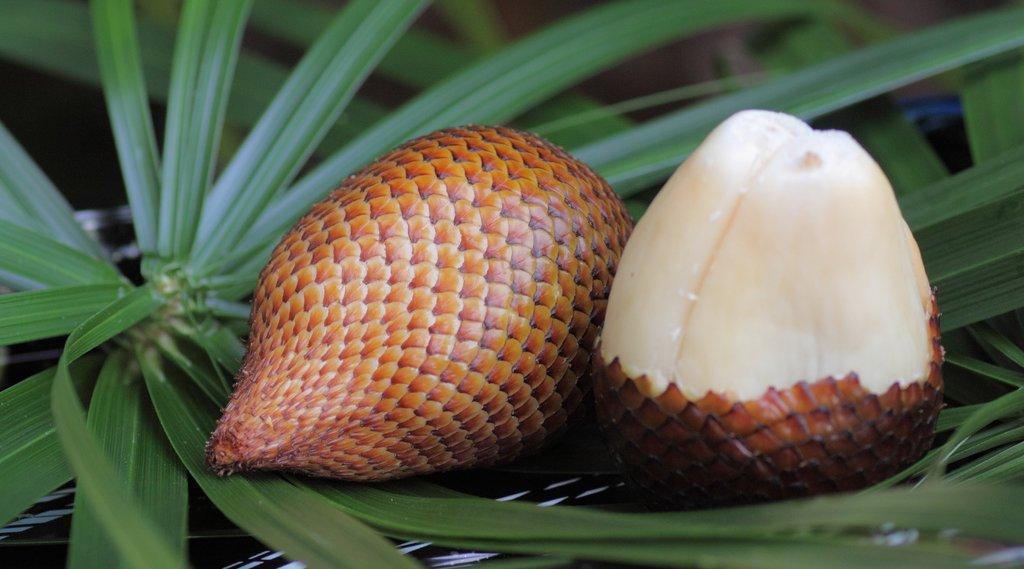 Asian Snake Fruit