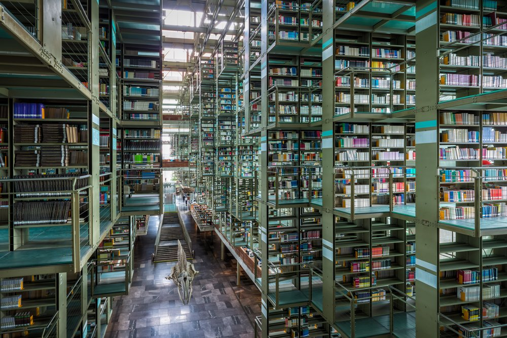 Beautiful Vasconcelos Library