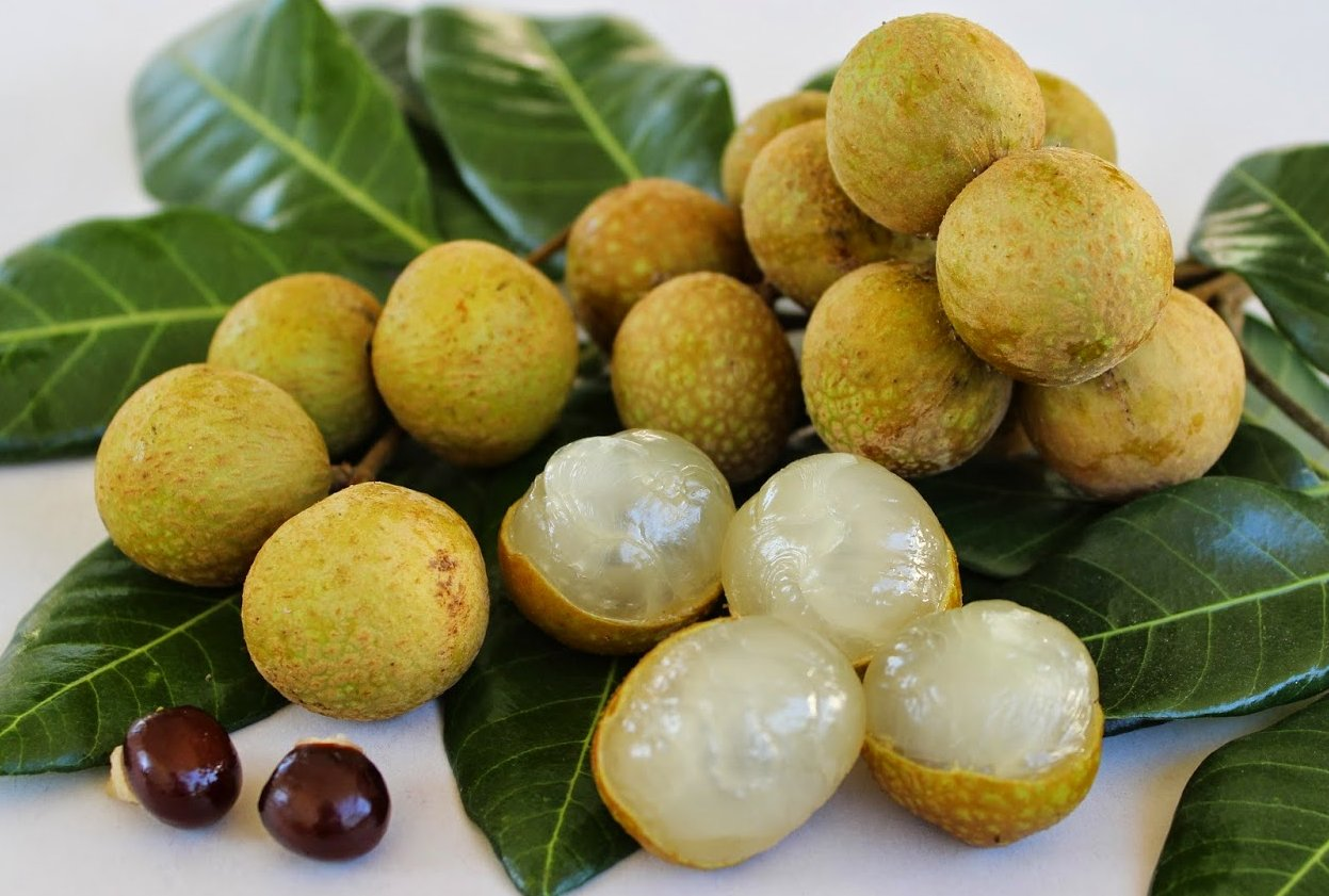 Longan – asian fruit