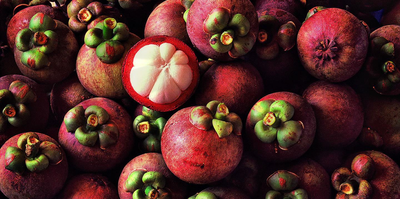 Mangosteen – asian fruit