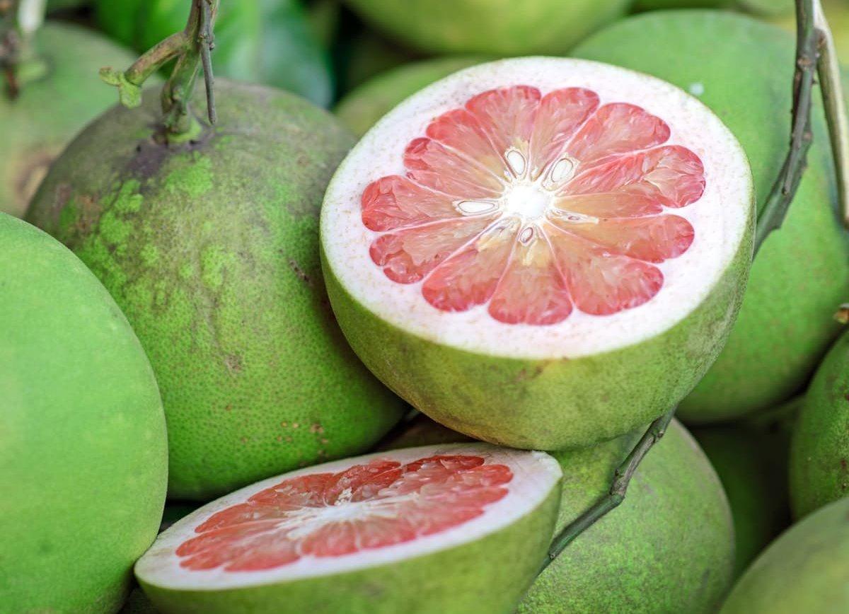 Pomelo – asian fruit