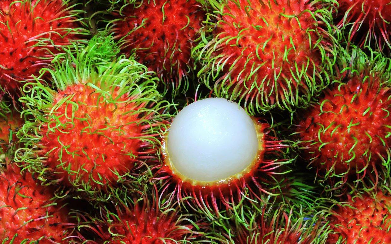 Rambutan – asian fruit