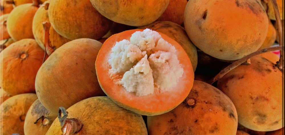 Santol – asian fruit