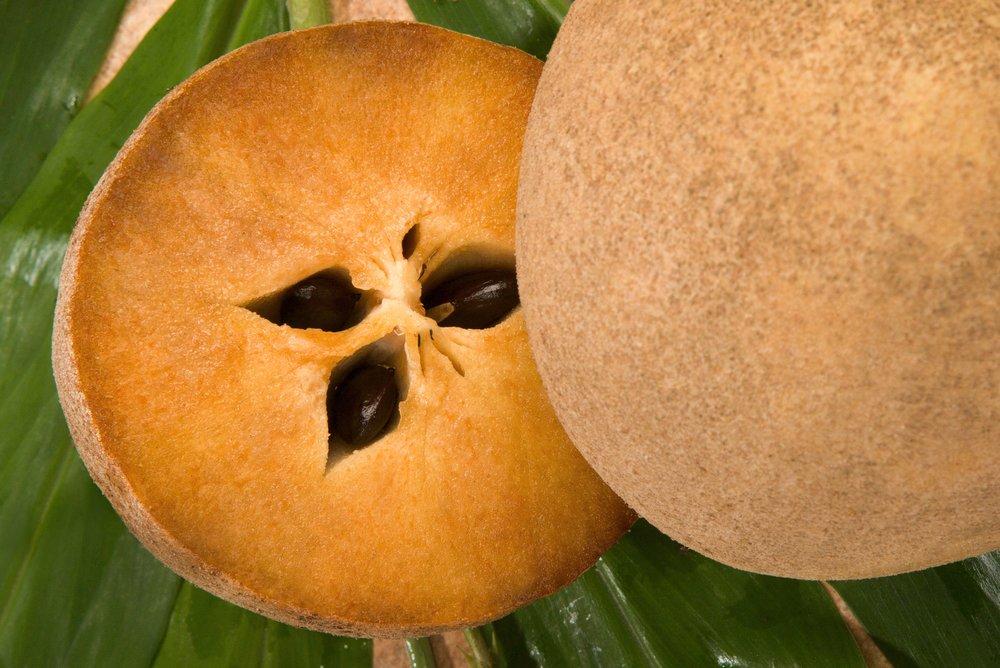 Sapodilla – asian fruit