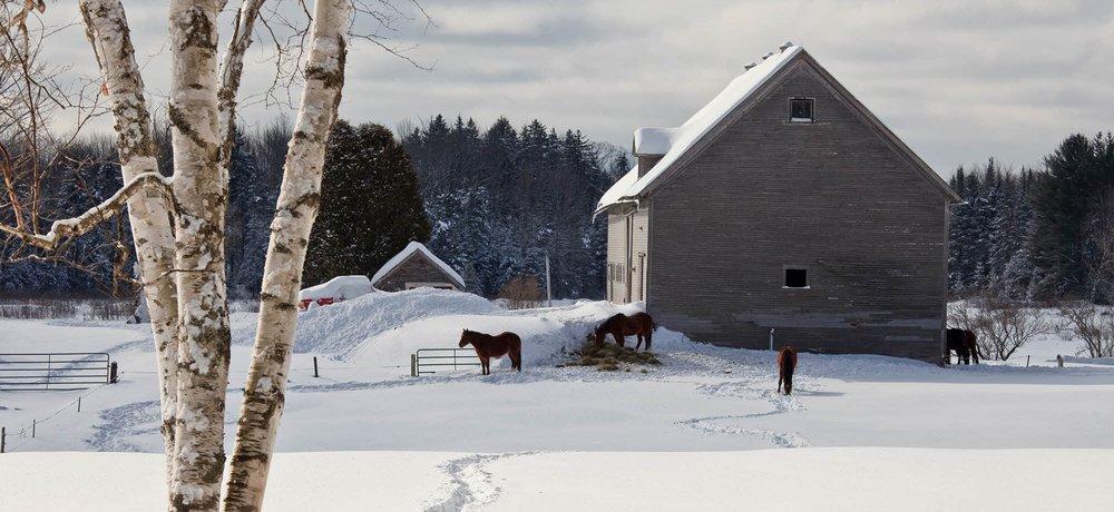 Woodstock Vermont – honeymoon destination