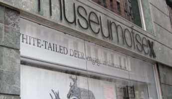 The Sex Museum strange museum 345x200 39 Insane Museums That Actually Exist for Some Reason