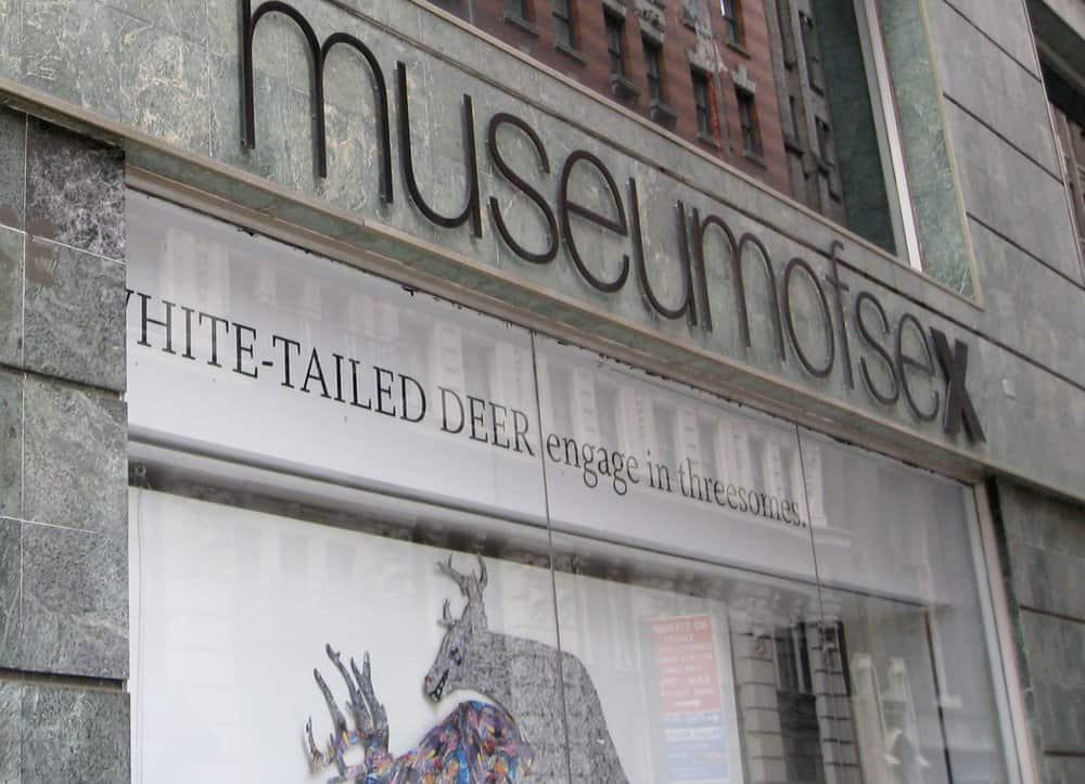 The Sex Museum – strange museum