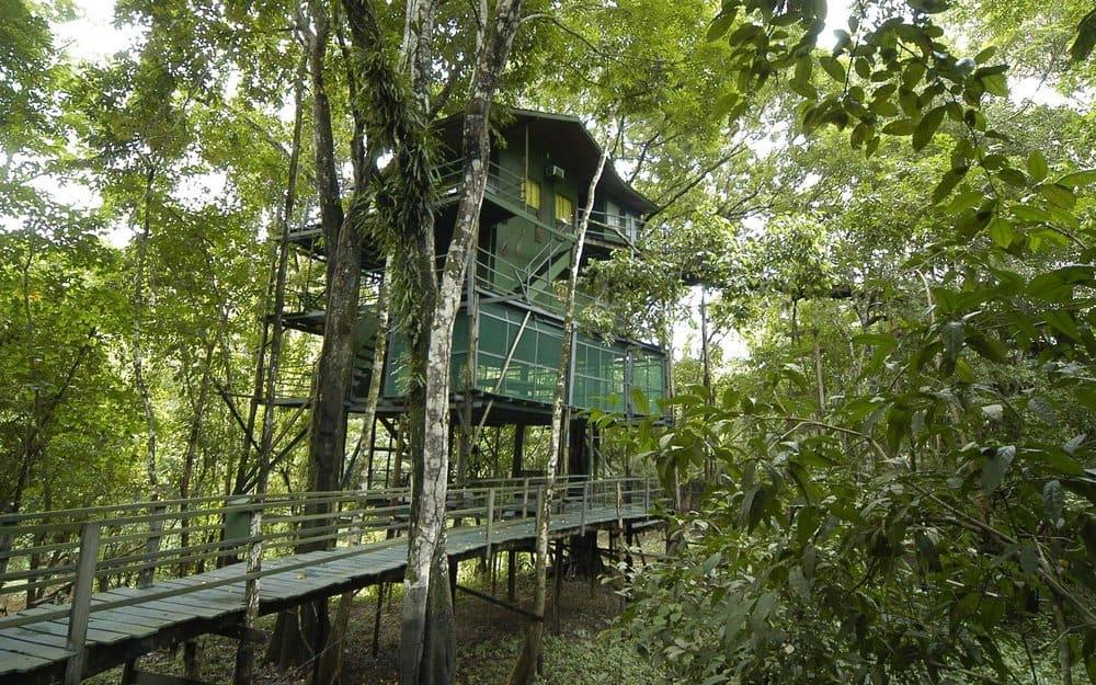 Ariau Amazon Towers – weird resort