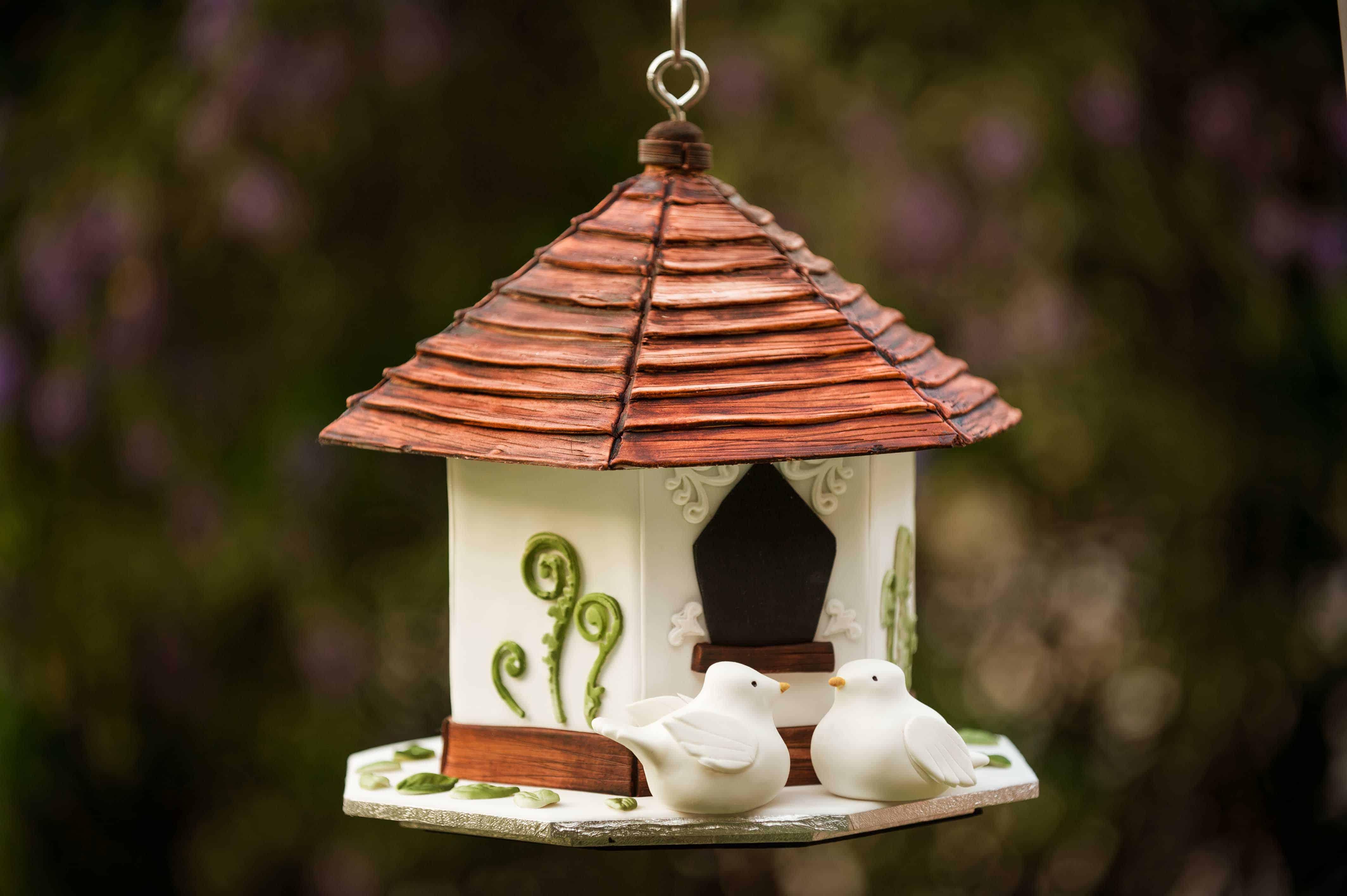 Bird House Cake Insane Baking Creations