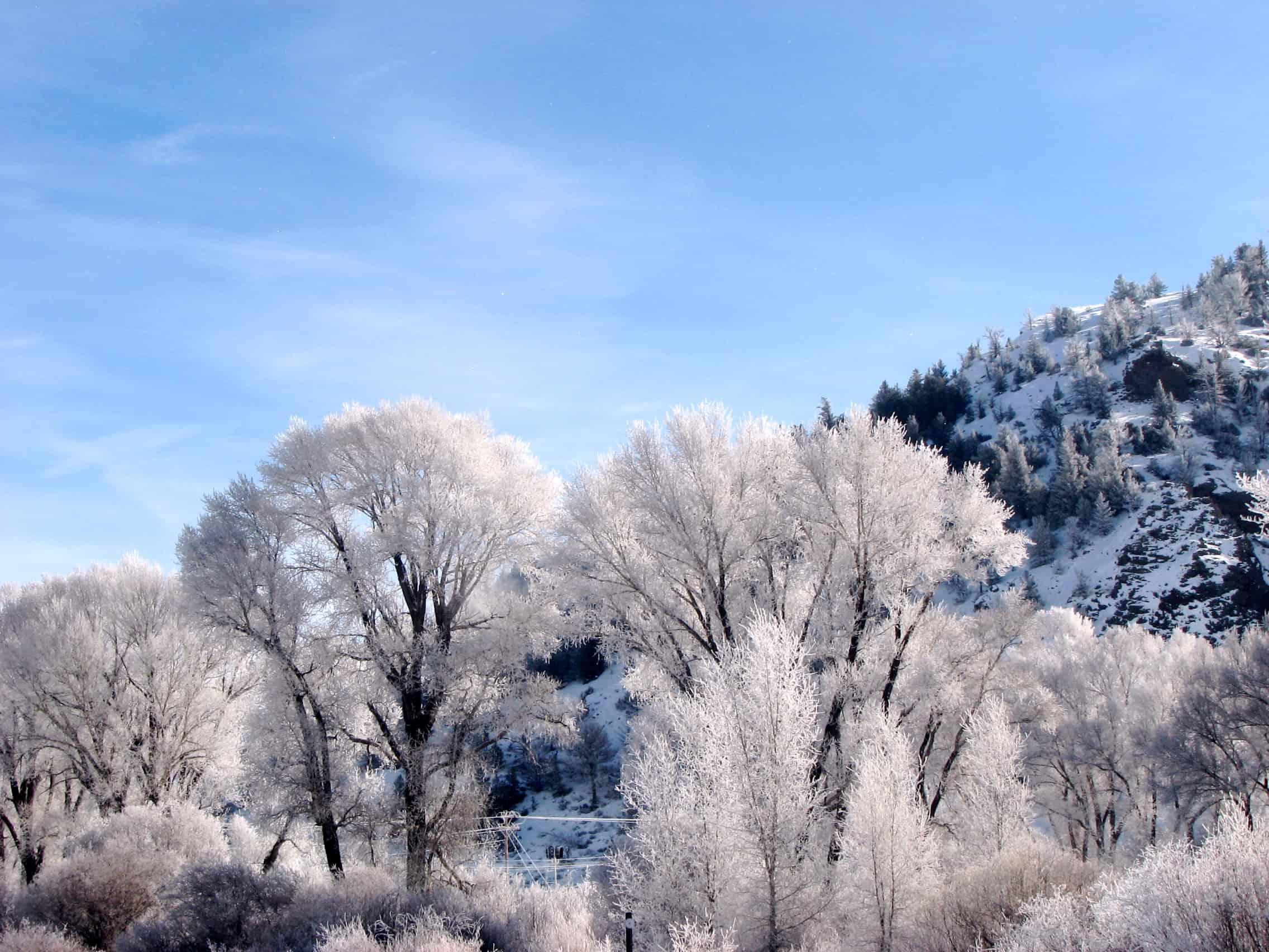 Denver Winter Vacations