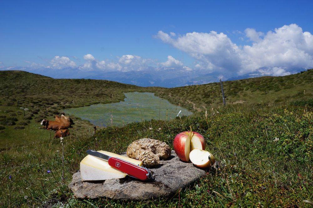 Best pocket knife companies - Victorinox knife cutting an apple