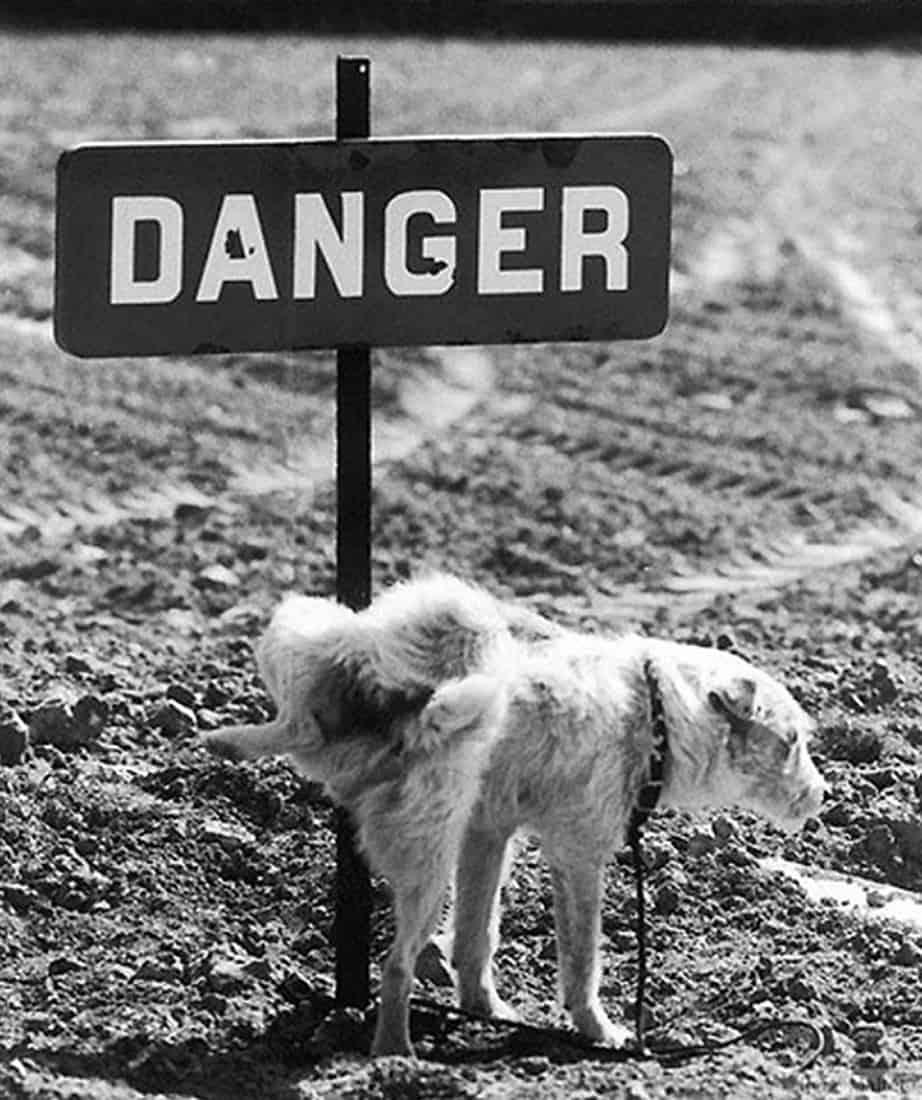 Danger – René Maltête street photograph