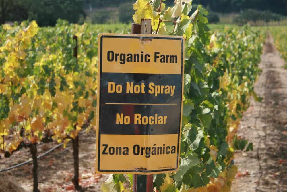 Organic Foods Are Free of Pesticides – science myth