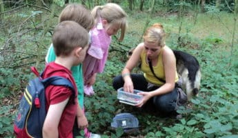 Geocaching activities for kids 345x200 11 Free Summer Activities To Keep Your Kids Occupied