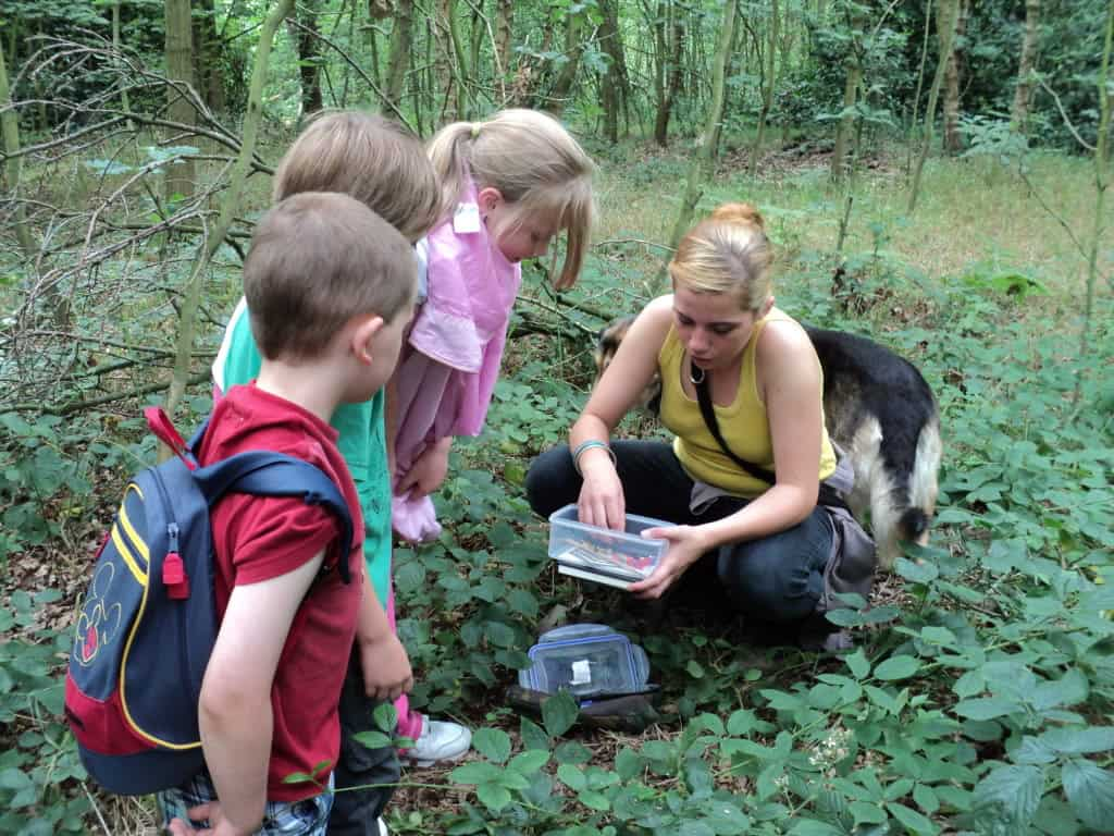 Geocaching – activities for kids