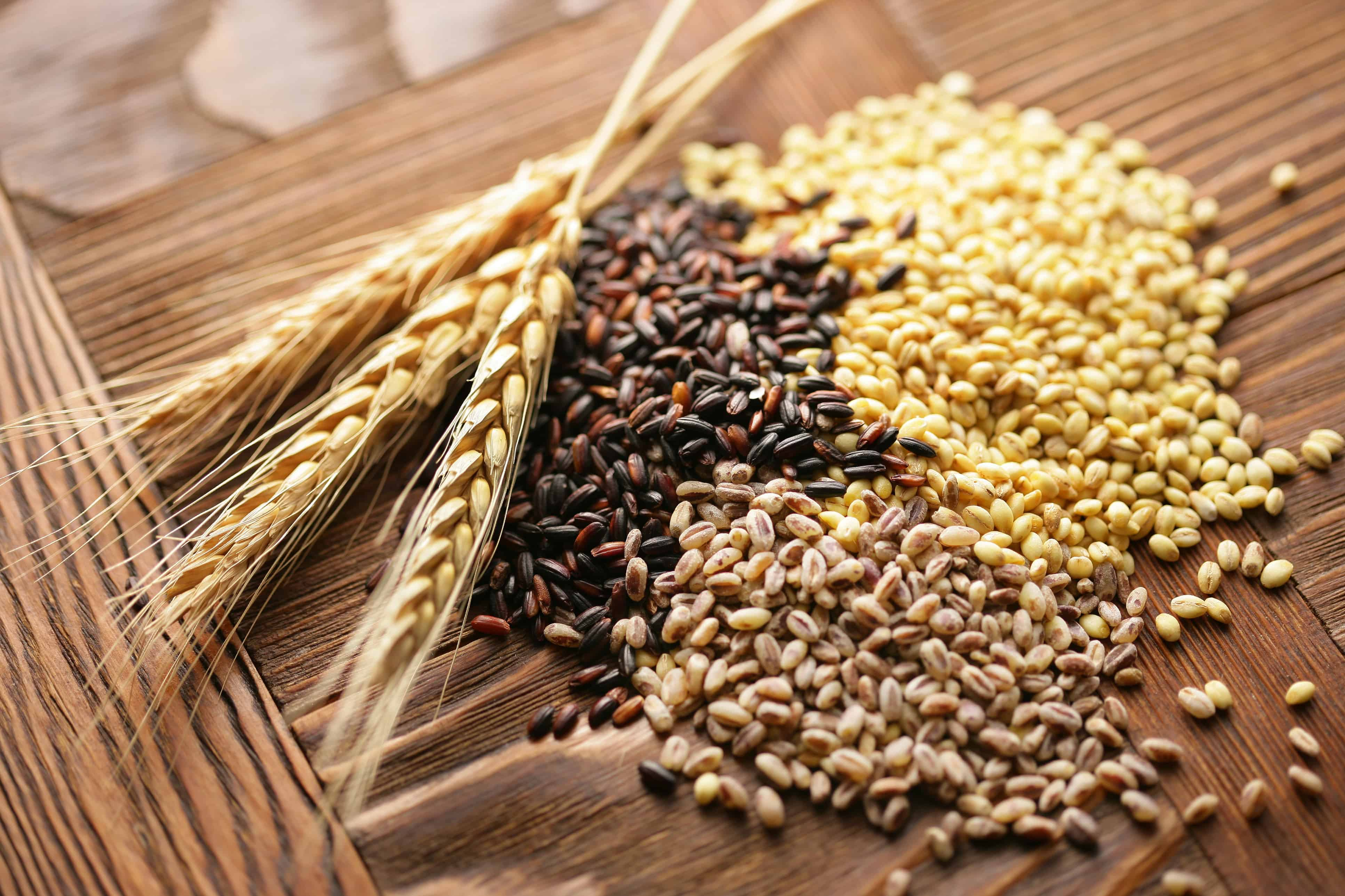 Aim For Whole Grain – lose weight fast