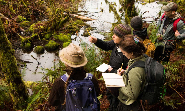 Wilderness Awareness Survival School