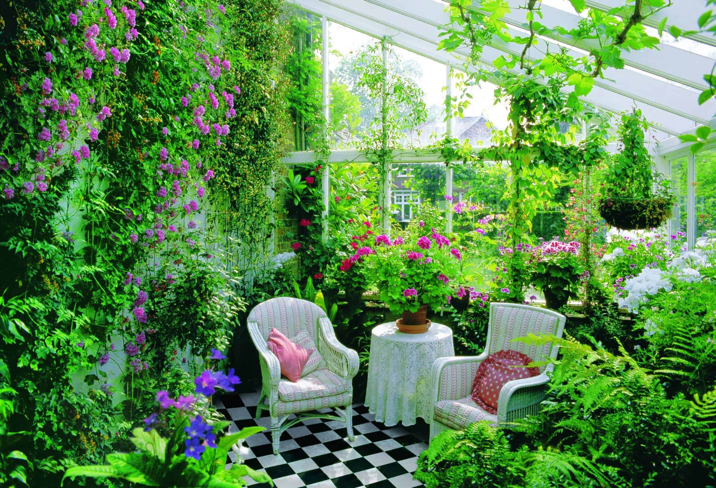 Plenty of Plants – small room decor