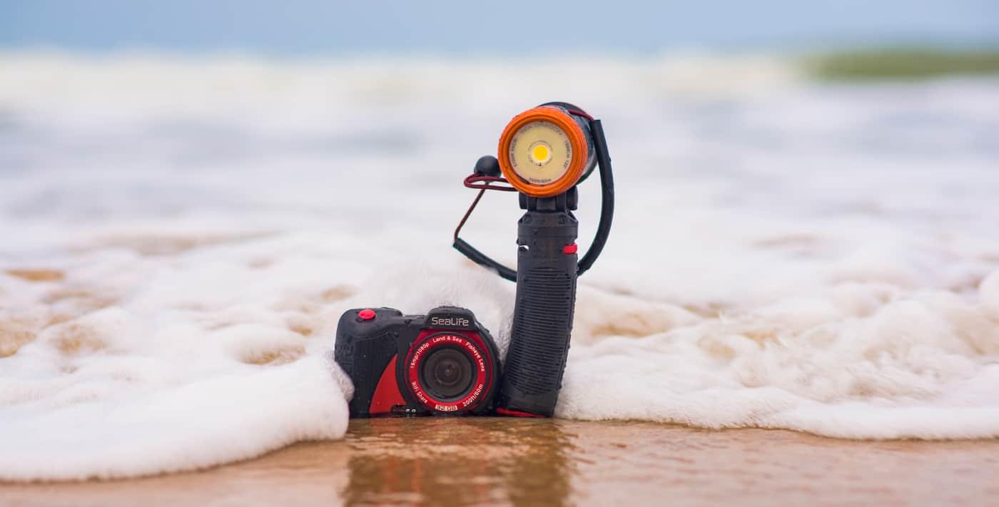 Sealife Lifestyle shoow