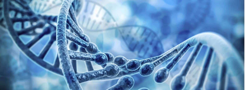 Genetics – how to get abs