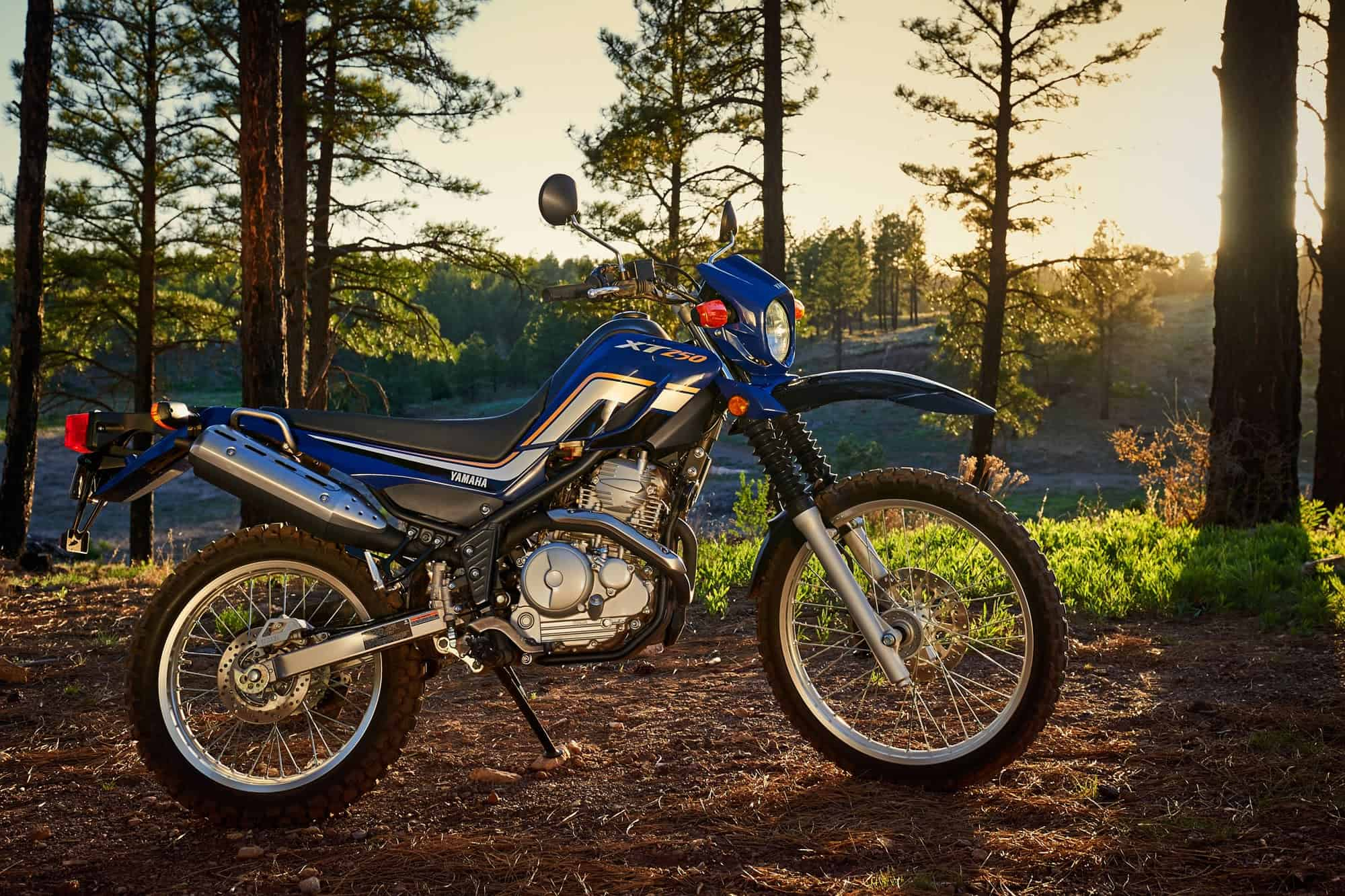 Yamaha Xt Review