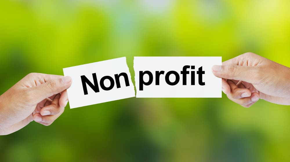 Non-Profit – corrupt industry