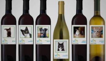 All Breed Rescue Wine brand help animals 345x200 Saving Lives: 12 Brands That Help Animals In Need
