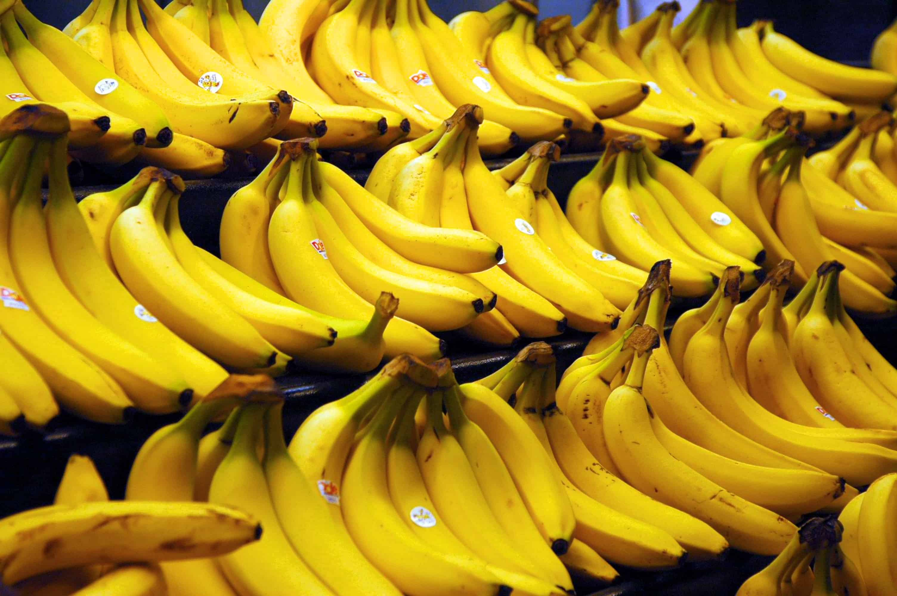 Bananas – food fact