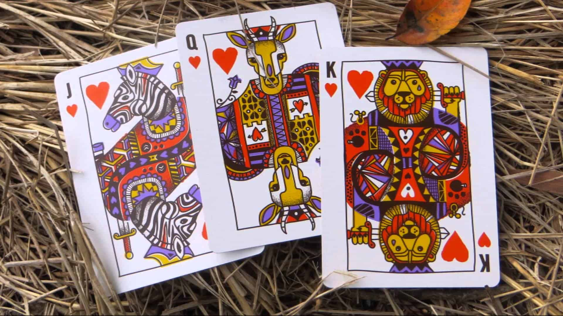 Theory11 Animal Kingdom Playing Cards – brands help animals