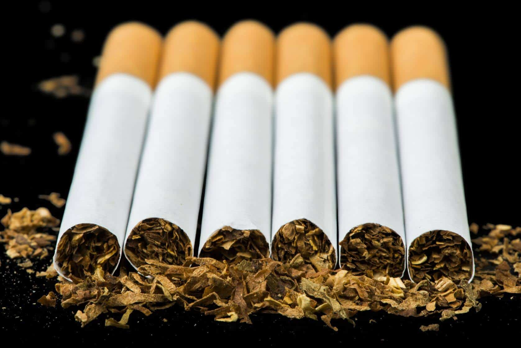 Tobacco Weighs In – smoking jacket