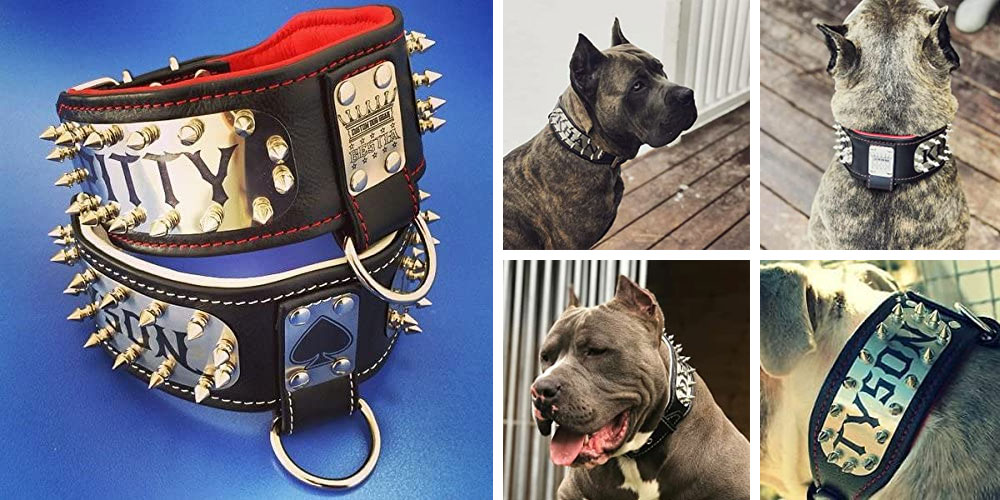 Bestia Personalized Kennel Dog Collar, Large Breeds only