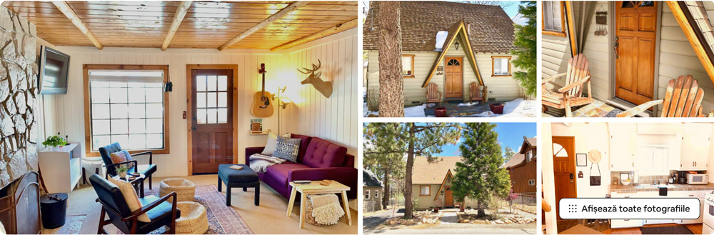 Bright Family Cabin - Close to Village & Big Bear Lake