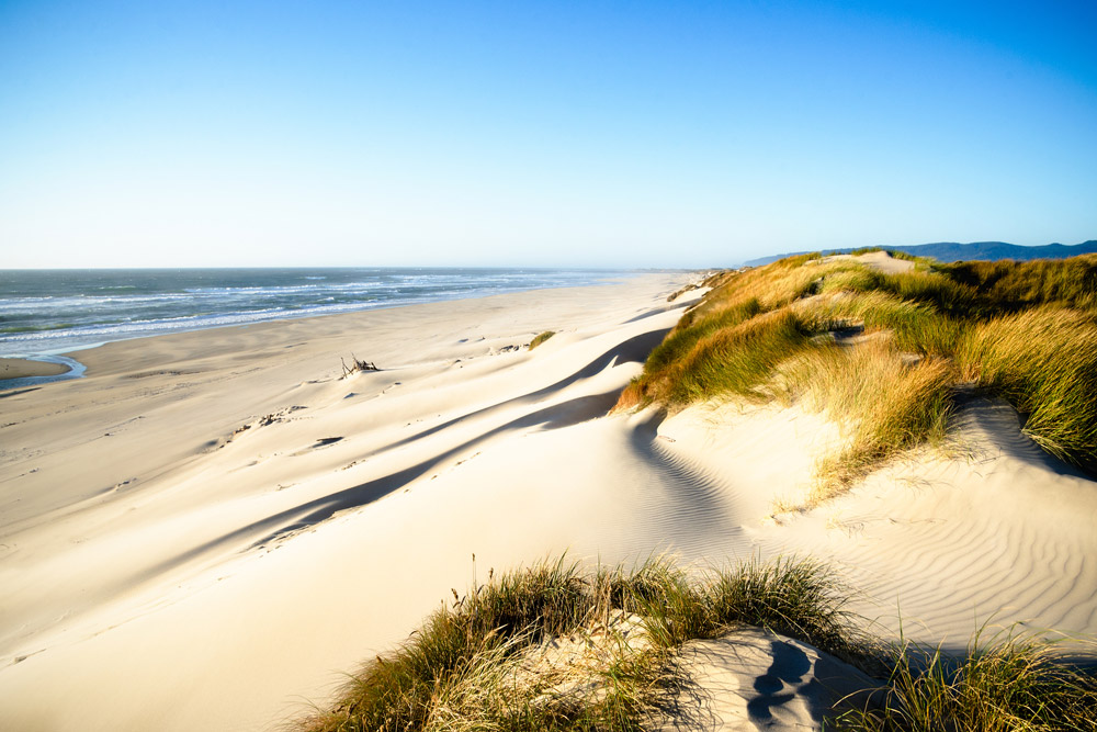 The Oregon Dunes – Golden Hour on the Oregon Coast