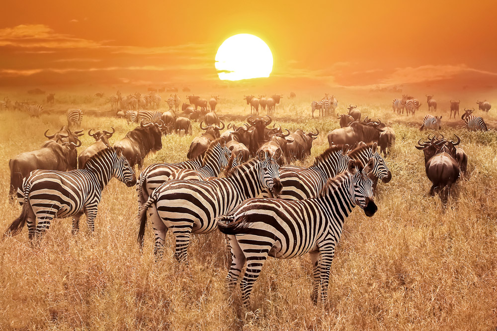 Most beautiful places in Africa The 10 Most Beautiful Places in Africa Wed Love to Visit