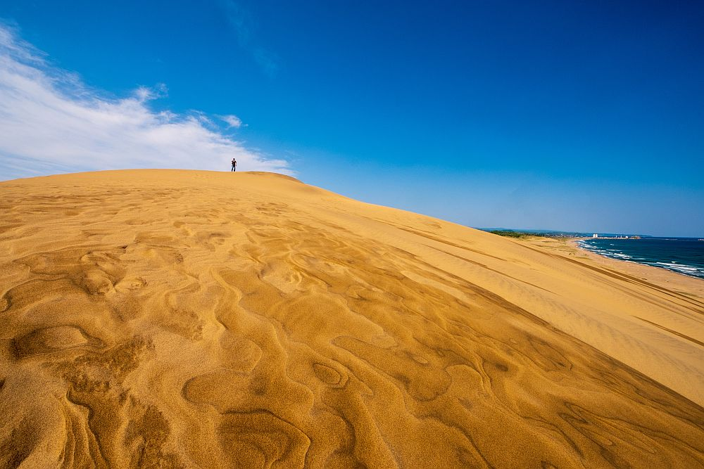 Wlnd patterns of Tottori sand dunes