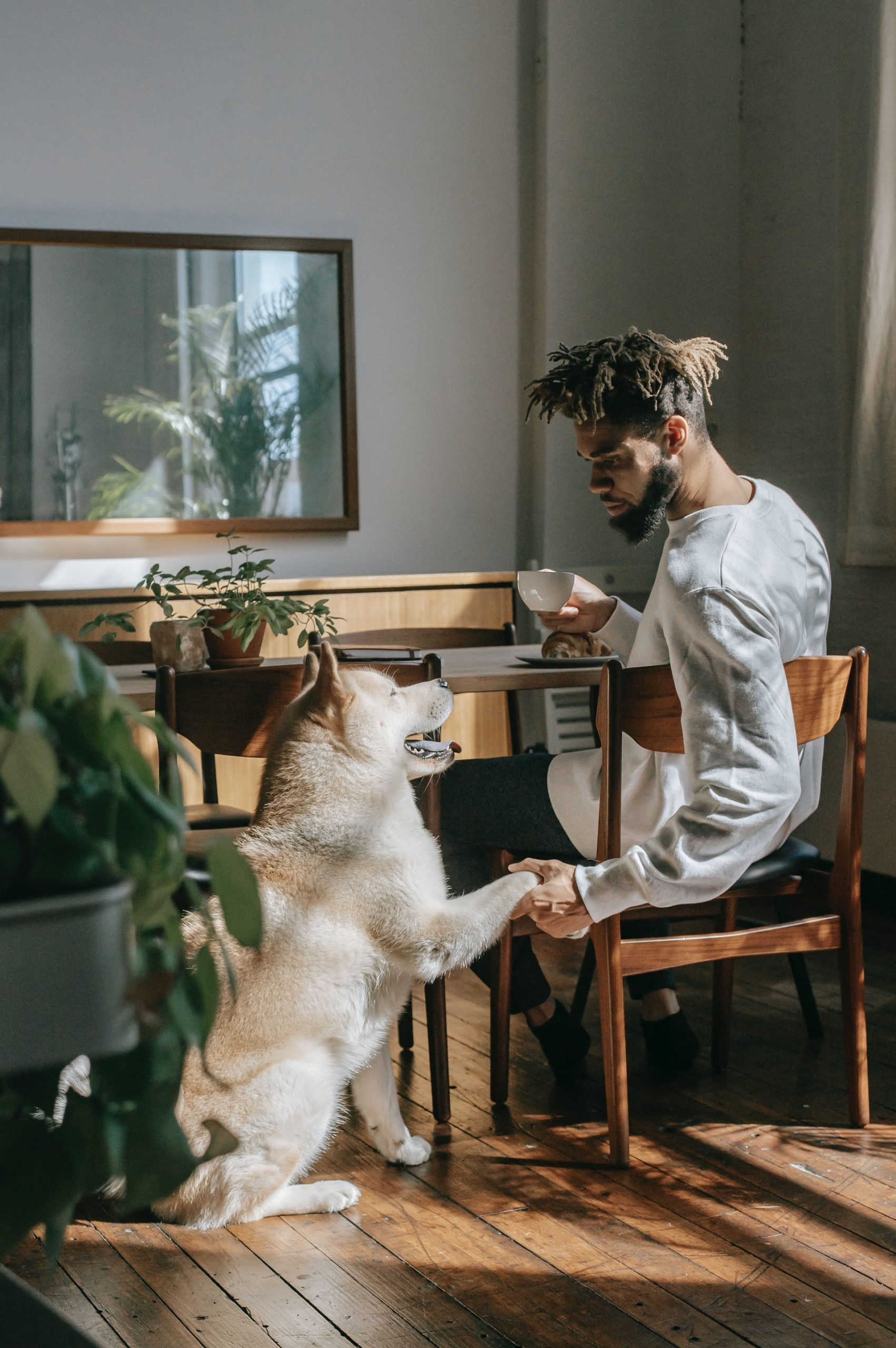 An eligible man shaking hands with his dog