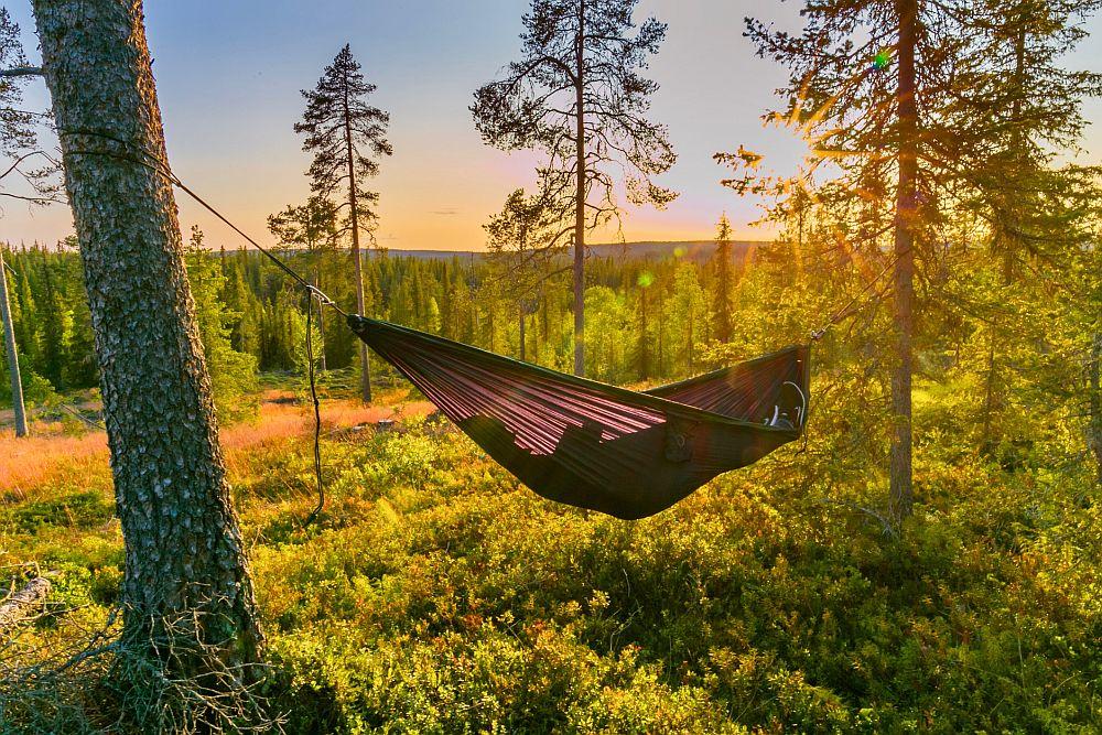 Best camping hammock
