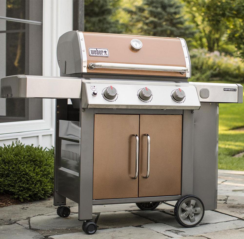 Weber Genesis II E 315 11 Best Propane Grills (in 2021) to Taste the Meat, Not the Heat