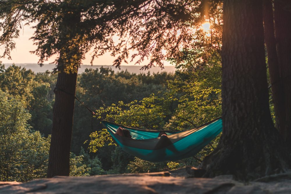 Camping hammock in the woods, at sunset
