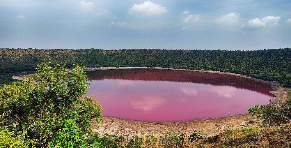 Lonar lake in Buldhana turns pink