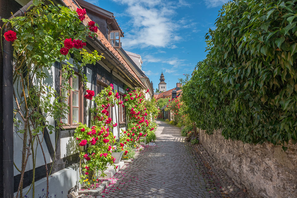 Visby Gotland Beautiful Sweden Pictures